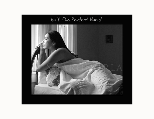 Half The Perfect World by Sharon Irla